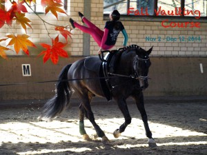 Fall-vaulting-course-sm